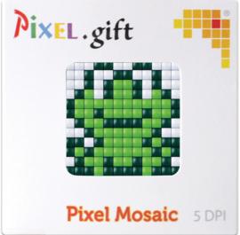 Pixel XL promotiedoosje kikker