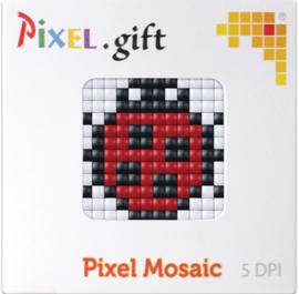 Pixel XL promotiedoosje lieveheersbeestje