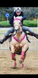 Western FH hoofdstel en borsttuig met fringe Roze Cob