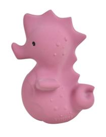 Tikiri Bijt- en Badspeelgoed met Rammelaar - Zeepaardje