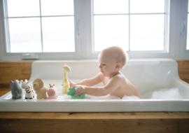 Tikiri Bijt- en Badspeelgoed met Rammelaar - Olifant