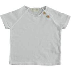 Clownfish Cotton T-shirt White -  Beans Barcelona