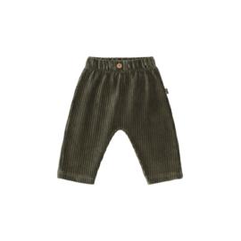 Baby Pants - Moss Rib Velvet - HOJ
