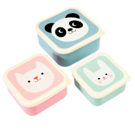 Snackbox 3 in 1 Panda , Kat , Konijn - DC