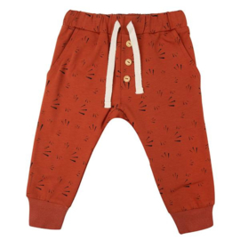 Pants Firework - Picante - Little Indians