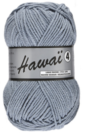 Hawaï 4  022 blauwgrijs