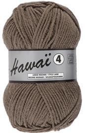 Hawaï 4 048 bruin