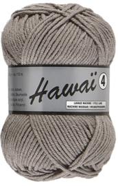 Hawaï 4  038 grijs