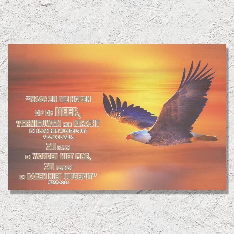 Jesaja 40:31 (Nederlands)
