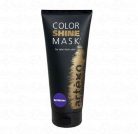 artégo Color Shine Mask Blueberry 200ml