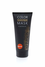 artégo Color Shine Mask  Melon200ml