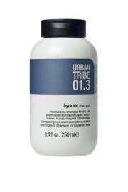 01.3 Hydrate Shampoo 250ml