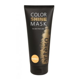 artégo Color Shine Mask  Honey200ml