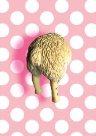 Sheep (back)wallhook