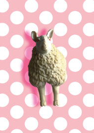 Sheep (front)wall hook