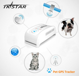 Pet GPS tracker for big size pet