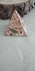 Kalkooliet Piramide