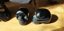 Blauwe Tijgeroog schedeltje