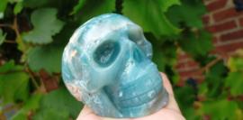 Caribbean Blue Calcite schedel