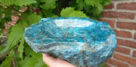 Blauwe Apatiet schaal