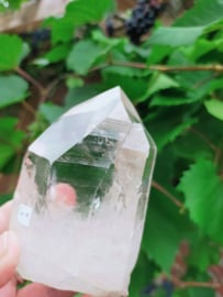 Inner Source  Twin Lemurian