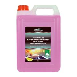 Protecton Ruitensproeiervloeistof 5-Liter