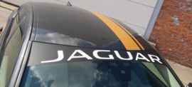 Jaguar Zonneband