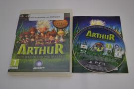 Arthur en de Wraak van Malthazard (PS3)