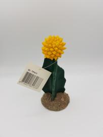 RepTech Cactus Geel Bloem