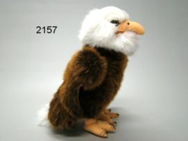 ADELAAR PLU/23CM (2157)