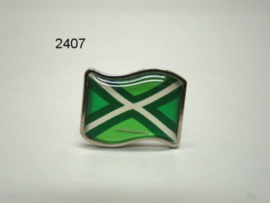 ACHTERHOEK/PIN VLAGMODEL (2407)