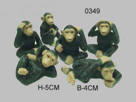 AAP PS/6/5CM (0349)