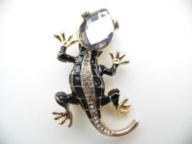 Broche salamander.