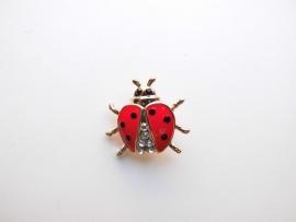 Lieveheersbeestje broche