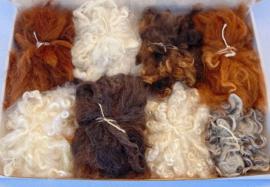 Assortimentsbox krullen en lokken - Alpaca, Angora en schapenwol