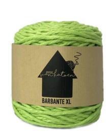 Barbante XL 55 meter Appeltjes groen