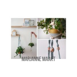 Marjanne maakt Zwolle en omgeving