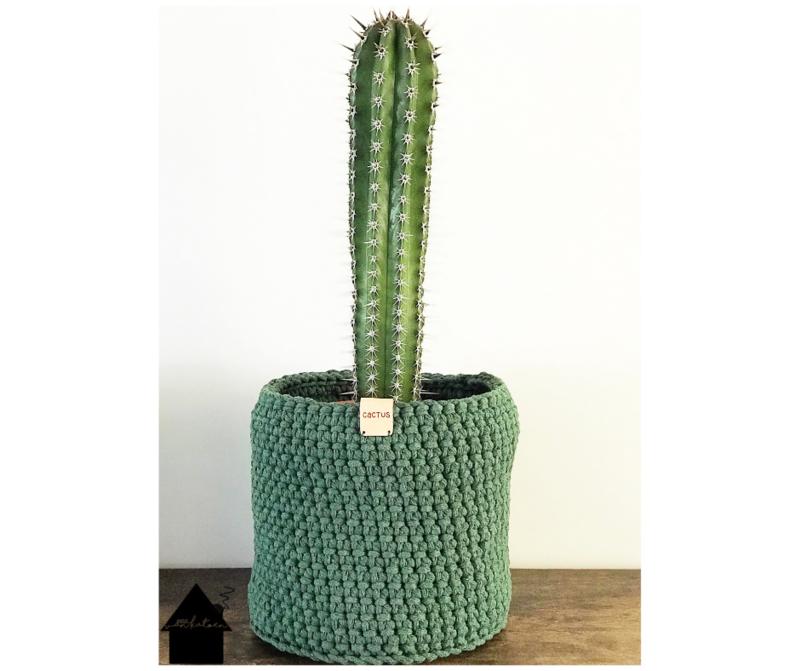 Chunky Cactus mand met leren label