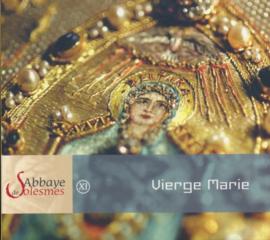 XI Vierge Marie | De Maagd Maria