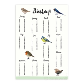 verjaardagsposter | Vogels (4 stuks)