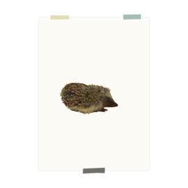 print | Egel