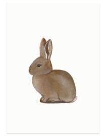 postkaart | Jong wild konijn