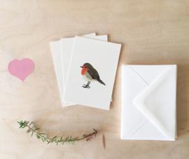mini kaartjes en envelop | Geranium & roodborstje (set)