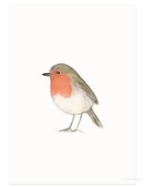 postcard | Robin watercolor