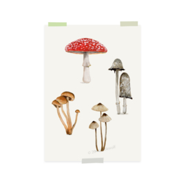 mini print | Mushrooms (2 pieces)