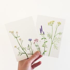 postkaart | Bloementhee