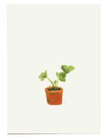 postkaart | Aarbeienplant