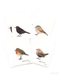 mini cards | Birds (set)