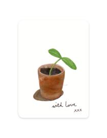 mini kaartje | Pompoenplantje