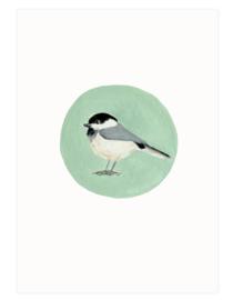 postkaart | Matkop